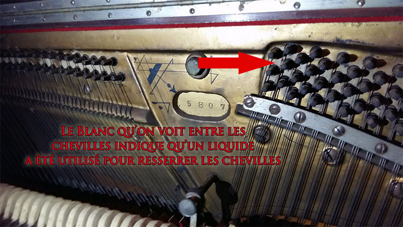 Chevilles du Piano Ludwig