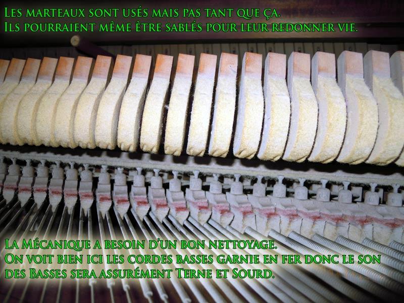 Les cordes basses du Piano Newcombe