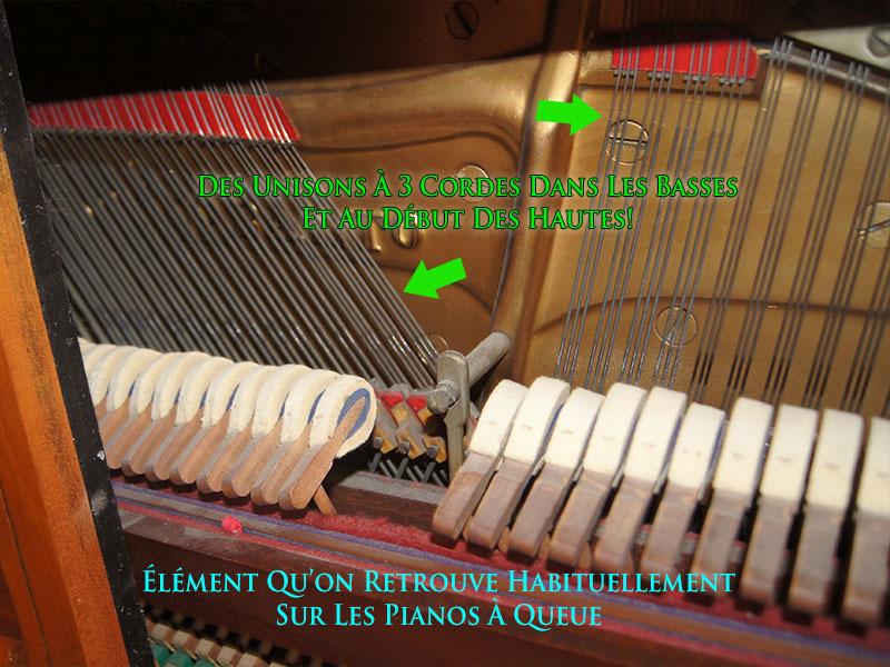 Cordes basses du piano Knabe