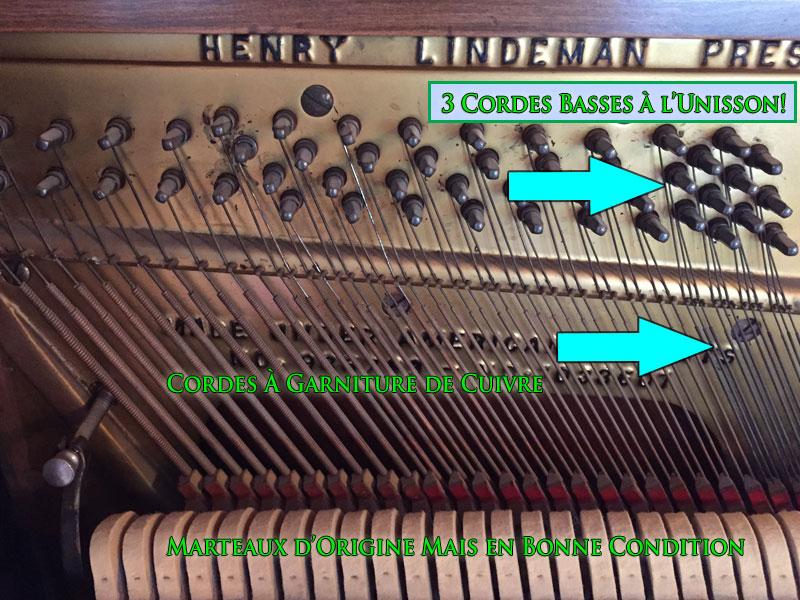 Les cordes basses du Piano MelodyGrand