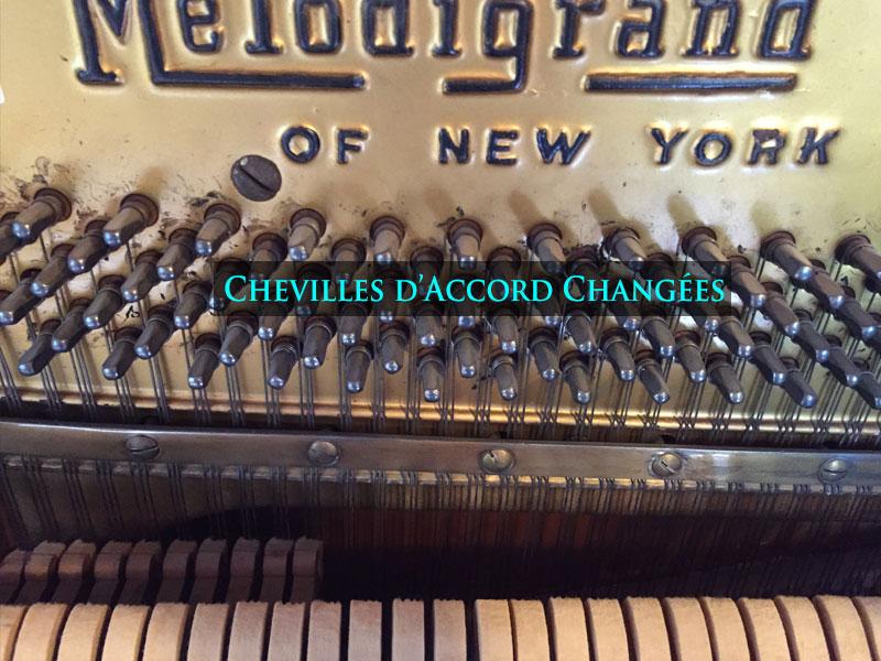 Les chevilles du Piano MelodyGrand