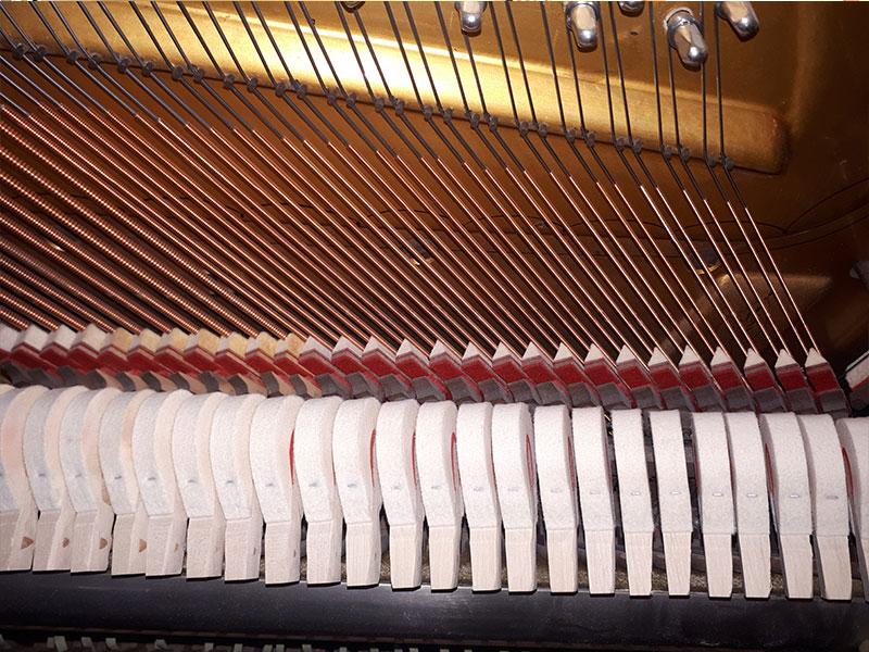 Étouffoirs du Piano droit Willis de 1902