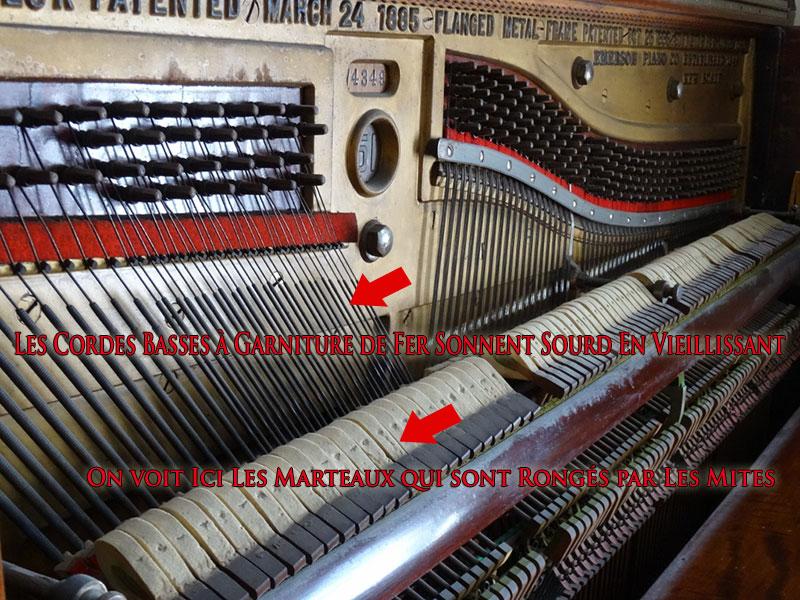 Les cordes basses du Piano Emerson