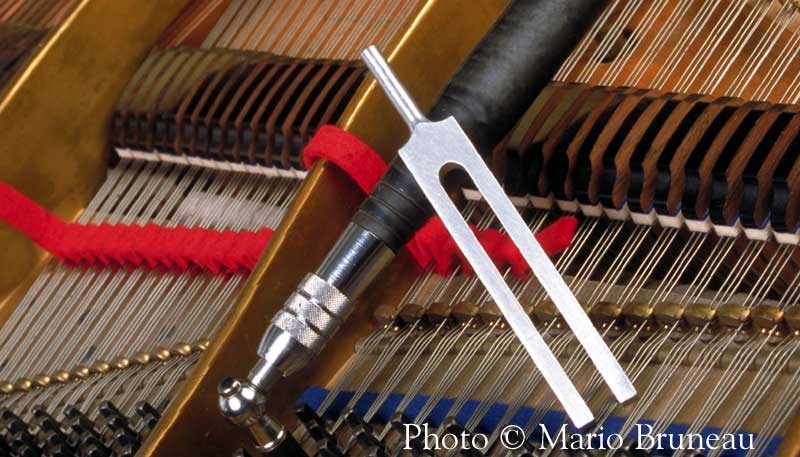 Piano tuning hammer and tuning fork